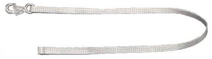 Picture of Lanyard Web 6'