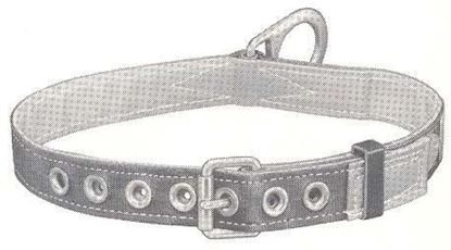 Picture of 5441S Safety Belt Lined 1D-S