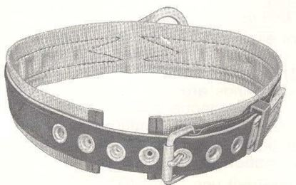 Picture of Safety Belt Padded 1D-S