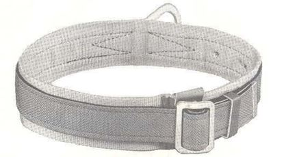 Picture of 5447-1D-L Safety Belt Padded 1D-L