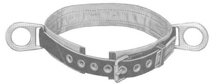 Picture of 5481 Belt Modular-M