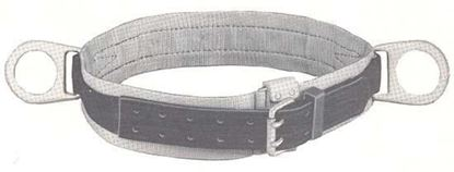Picture of 5447LB-S Belt Positioning 2D-S